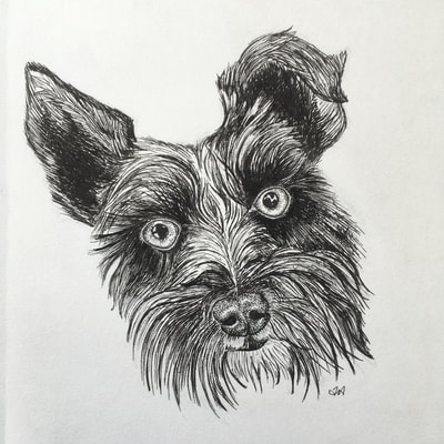 pen drawing dog